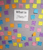 5th graders thoughts about poetry