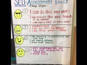 Assessment Capable Learner