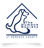 Blanket and Towel Drive for The Humane Society of Genesee County