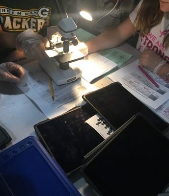 Microscopic Magic