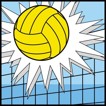 Middle School Volleyball Information: