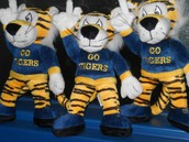 Who wants to be the Tamanend Tiger?