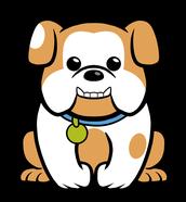 Buddy the St. Clare Bulldog