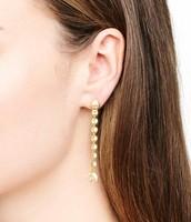 Trevally Earrings - 2-in-1