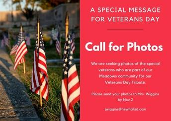 Veteran's Day Celebration -Call for Photos