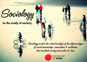 Sociology and Government