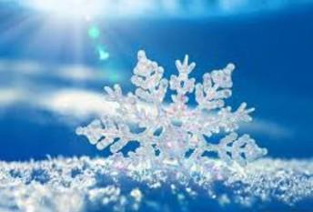 Winter Wonderland 2019- 2020