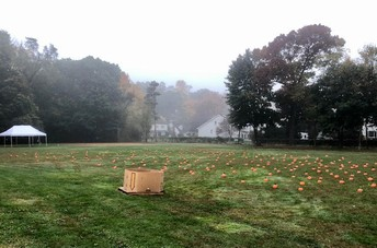 NPS Pumpkin Picking