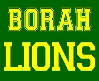 Borah Volleyball Camp