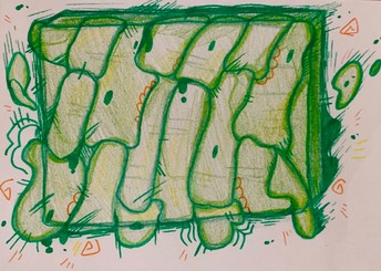 under the microscope abstract drawing of green plant cell
