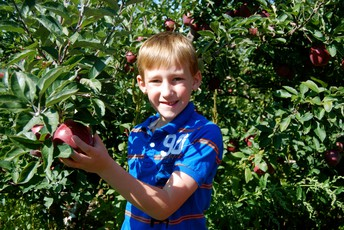 K Students visit Erwin's Orchard