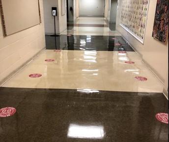 Floor Sticker to social distance in line