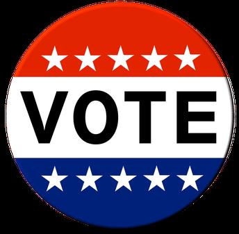Información del votante