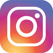 Follow us on Instagram @bbalibrary