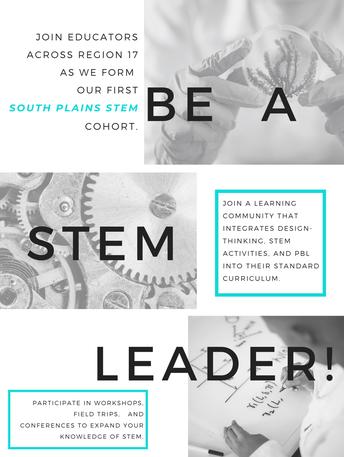 STEM Cohort Flyer
