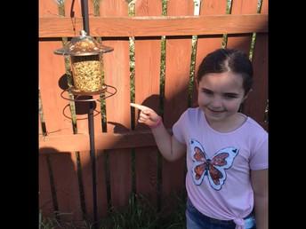 First Grade Bird Feeders by Rebecca G.