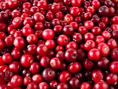 Why Cranberries?