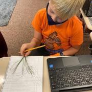 5th Graders Make Scientific Sketches