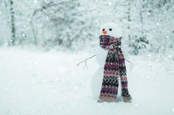 Preparing for Winter Play