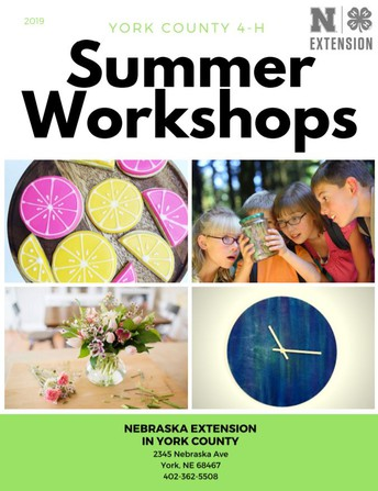 4-H Summer Workshops