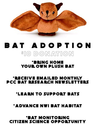 Bat Adoption Program Great Success!