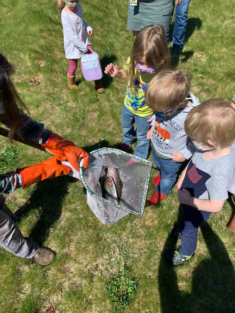 preschoolers circled around someone holding a net with a fish inside