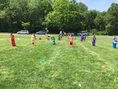 Field Day - May 31, 2017