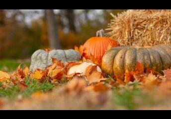 October Important Dates