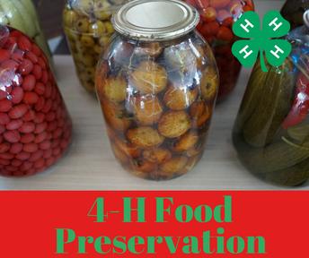 Start Food Preservation Exhibits NOW