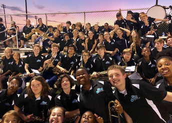 DMS Panther Bands