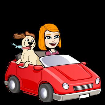 PM Car Rider Update