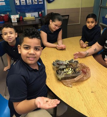 McMahon students seated at table holding worms