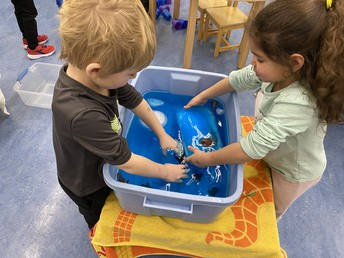 Water Play with Icebergs and Orca's