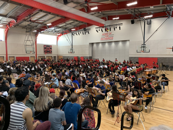 Our final instrumental concert of the year!
