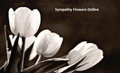 Emerging Answers For Rational Solutions In Sympathy Flowers Online