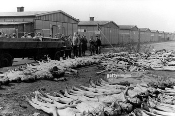 Over 5,000 dead bodies