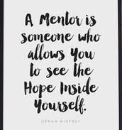 ESP Mentor Support