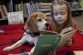 girl laying on the floor reading to a dog on a red blanket