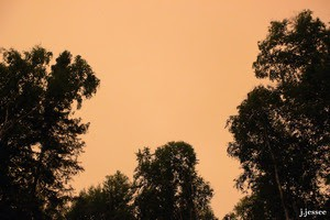 Smokey Sky Days