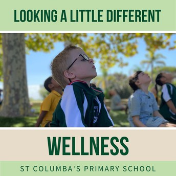 Wellness - looking a little different