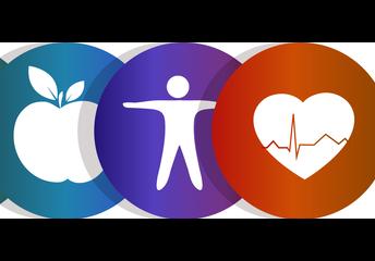 Physical Education & Health/Wellness