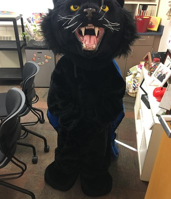 Meet Pete the Panther!