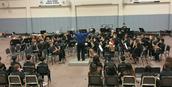 Mesa Verde Band
