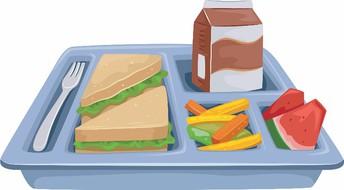 Mountainburg Schools Food Service Information