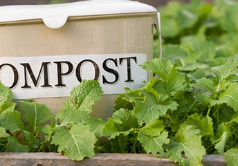 Do you like to compost?