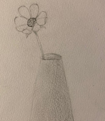 Pencil drawing of flower in a vase