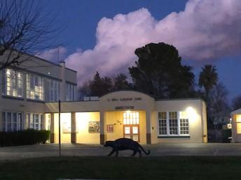 C.E.Dingle Elementary School