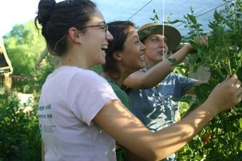 Summer Externships: Make a local impact (and get paid)!