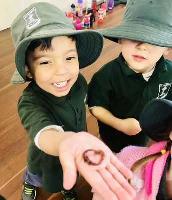 Wriggly Worms in Kindy