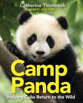 CAMP PANDA: HELPING CUBS RETURN TO THE WILD by Catherine Thimmesh